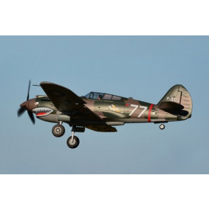 FMS 980MM P-40B FLYING TIGER PNP
