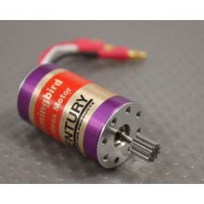 CENTURY LIGHTNING BRUSHLESS MOTOR