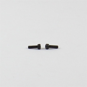 AUDACITY GENESIS BOLT, ALLEN HEAD (M3X8) (SET OF 2)
