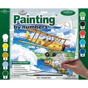 Cub Plane Paint By Number