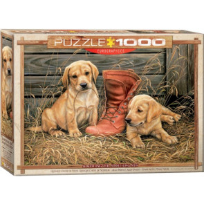 EUROGRAPHICS PUZZLES Something Old, Something New (Golden Lab Puppies & Boot) Puzzle (1000pc)